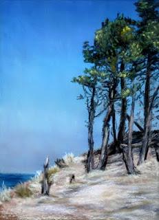 Pines in Rosisle
